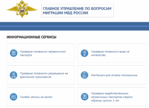 Проверка готовность гражданства рф по московской области
