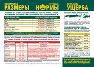 Правила рыбалки в ростовской обл в 2020г