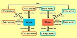 Таблица степень родства