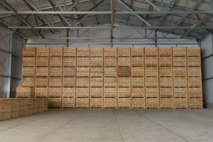 Проект овощехранилища на 1000 тонн