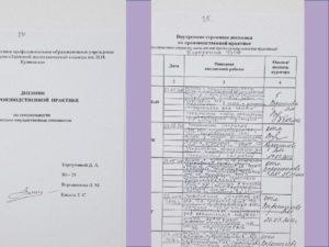 Дневник заполнения практики в фссп в кадрах