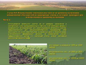 Использование земель не по целевому назначению ответственность