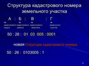 Расшифровка кадастрового номера квартиры