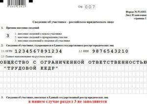 Распределение доли общества единственному участнику образец р14001 лист з