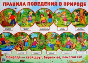 Правила охраны природы для детей