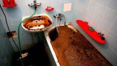 Что делать соседи залили участок канализацией